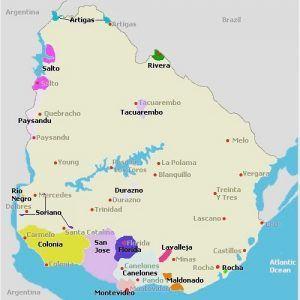 Produção de Vinho no Uruguai