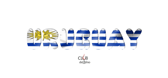 Vinhos do Uruguai - Grandes Variedades de Vinho - America Latina