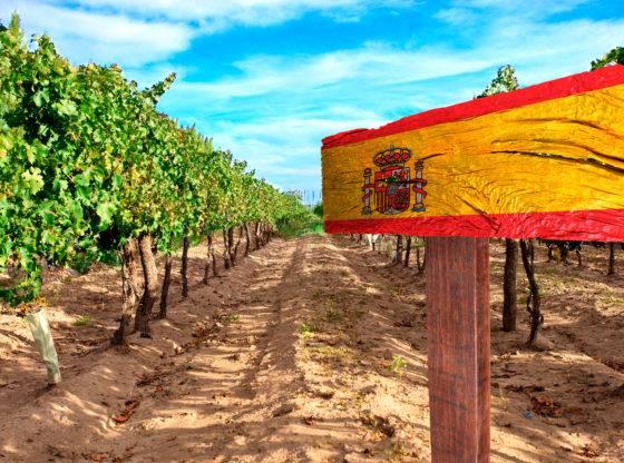 vinho-espanhol