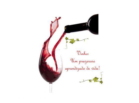 paixão por vinhos