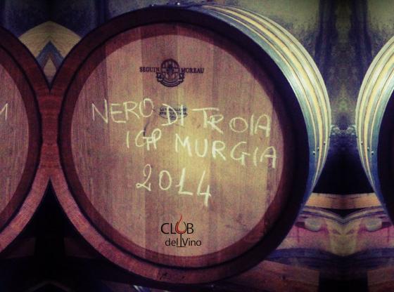 Vino nero di troia tra leggenda e realt club del vino for Francesca la troia