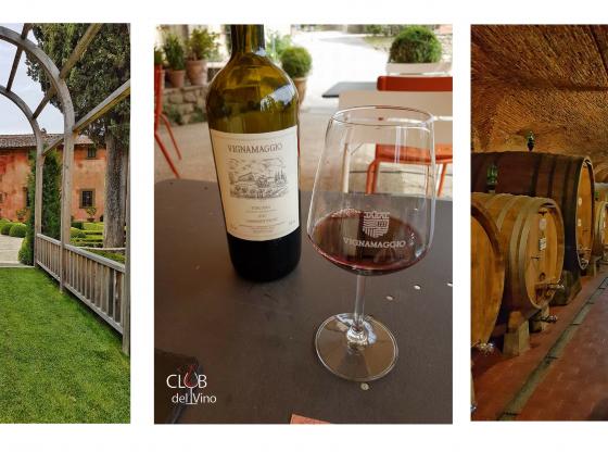 Degustazione di Vino alla Villa di Vignamaggio