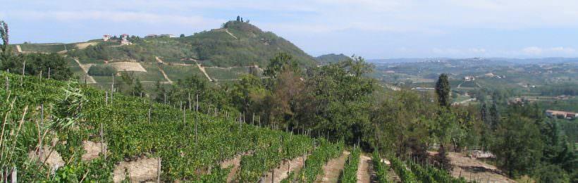 macchina per produzione di vino naturale
