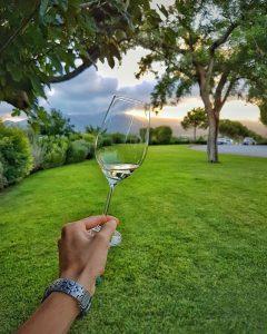 un calice di vino delle cantine Antinori