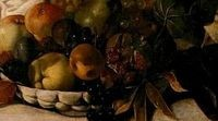 Close-up of the fruit in Bacchus