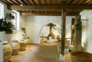 MOO Museo dell'Olivo e dell'Olio - Fondazione Lungarotti, Torgiano (PG) - sala IV.jpg